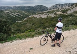 Gravel Bike in Les Alpilles