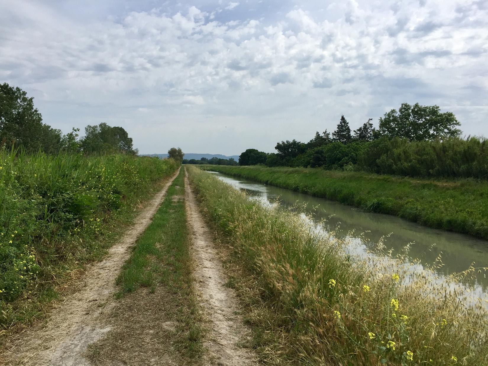 canal arlésien